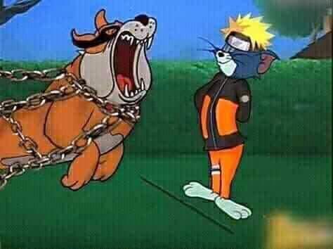 Chết cười Naruto phiên bản Tom và Jerry, Cửu Vĩ ăn đòn đến ngất xỉu rồi bị phong ấn - Ảnh 1.