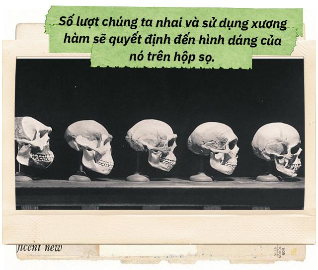 Đọc cuối tuần: Từ một con dê khuyết tật cho đến những bí ẩn trong bộ xương người - Ảnh 17.