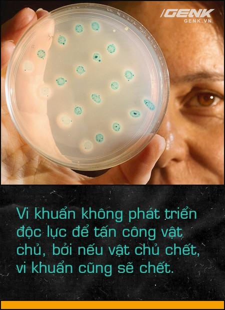 Trong cuộc chiến của vi khuẩn, con người chỉ là một thường dân nhỏ bé không may chết vì đạn lạc - Ảnh 3.