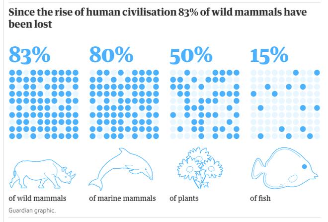 Con người chỉ chiếm 0,01% sự sống trên trái đất nhưng lại hủy diệt 83% các loài khác - Ảnh 2.