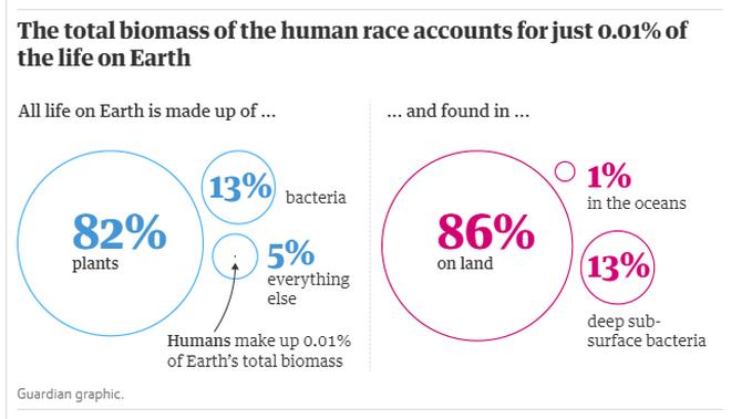 Con người chỉ chiếm 0,01% sự sống trên trái đất nhưng lại hủy diệt 83% các loài khác - Ảnh 4.