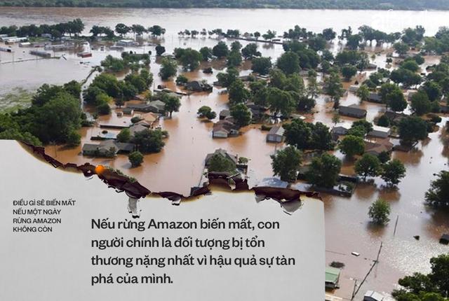 Nếu rừng Amazon biến mất, thế giới mất đi 20% lượng nước ngọt, 20% lượng oxy, con người chịu ảnh hưởng trực tiếp - Ảnh 6.