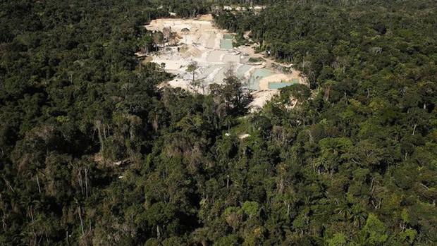 Thợ mỏ trái phép, nông dân và các nhóm khai thác tài nguyên của Brazil: Những thế lực đang âm thầm phá hủy lá phổi xanh Amazon - Ảnh 2.
