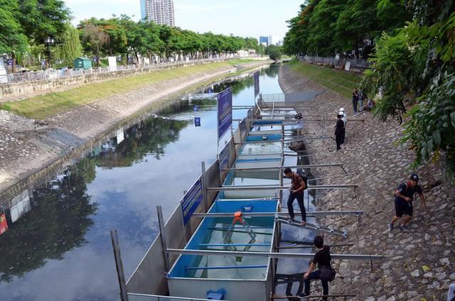 Cận cảnh chuyên gia Nhật Bản tắm nước sông Tô Lịch - Ảnh 4.