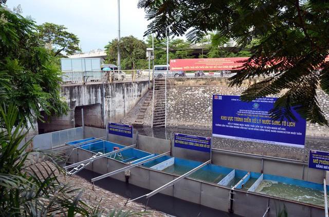 Cận cảnh chuyên gia Nhật Bản tắm nước sông Tô Lịch - Ảnh 7.