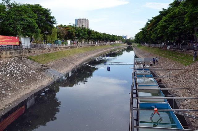 Cận cảnh chuyên gia Nhật Bản tắm nước sông Tô Lịch - Ảnh 9.