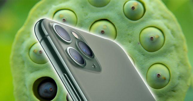 Cảnh báo: Đừng mua iPhone 11 Pro, iPhone 11 Pro Max nếu bạn thuộc 15% dân số thế giới mắc phải chứng sợ lỗ - Ảnh 4.
