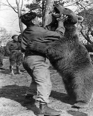 Wojtek: Chú gấu nghiện bia được lấy làm biểu tượng trên huy hiệu của lực lượng pháo binh Ba Lan - Ảnh 6.
