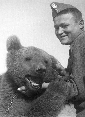 Wojtek: Chú gấu nghiện bia được lấy làm biểu tượng trên huy hiệu của lực lượng pháo binh Ba Lan - Ảnh 11.