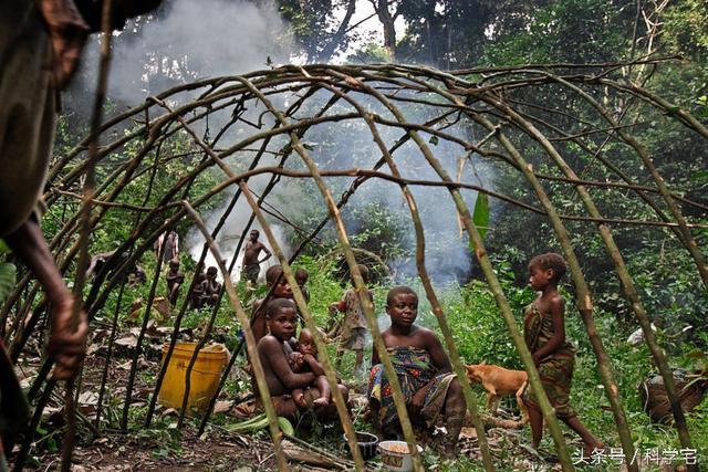 Thế giới thực sự tồn tại chủng người lùn như người hobbit tại Châu Phi - Ảnh 7.