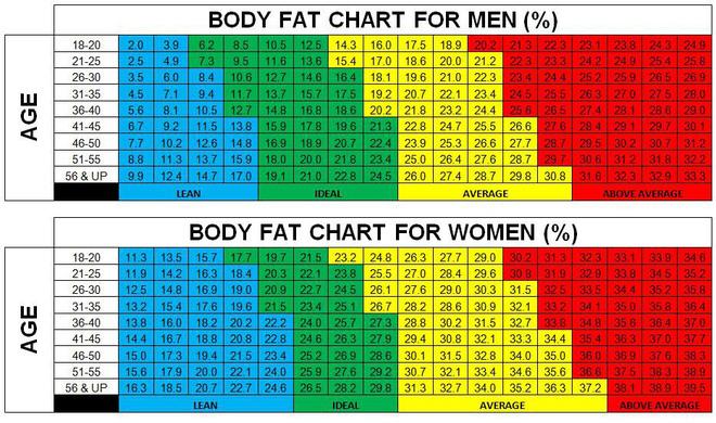 """Cách đo """"mỡ thừa đơn giản để bạn biết mình có thực sự thừa cân hay không - Ảnh 1."""