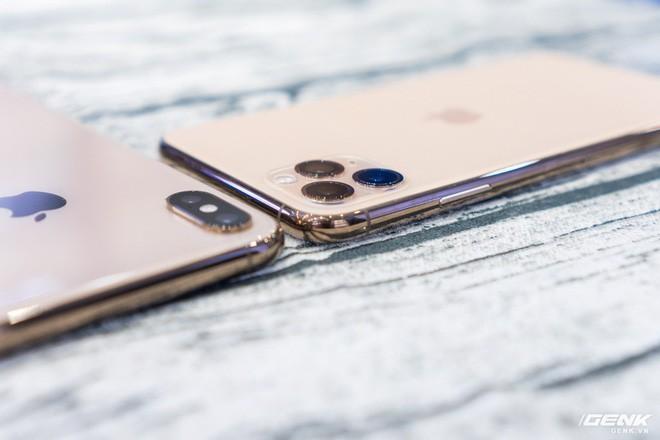 Bị chê bai hết lời nhưng cụm camera trên mặt lưng iPhone 11 chính là yếu tố giúp gia tăng doanh số - Ảnh 5.