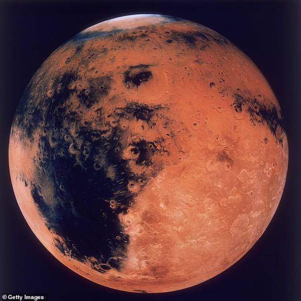 Đây sẽ là cách con người tồn tại trên sao Hỏa: ăn thịt nhân tạo, trồng rau trong hầm và... nhai côn trùng sống qua ngày - Ảnh 1.