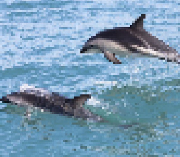 Sự thật đáng buồn về 22 bức tranh của các loài động vật có số lượng pixel tương ứng với số cá thể còn sống - Ảnh 18.