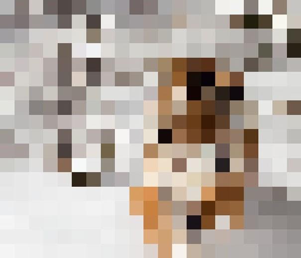 Sự thật đáng buồn về 22 bức tranh của các loài động vật có số lượng pixel tương ứng với số cá thể còn sống - Ảnh 3.