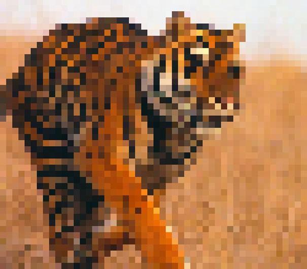 Sự thật đáng buồn về 22 bức tranh của các loài động vật có số lượng pixel tương ứng với số cá thể còn sống - Ảnh 5.