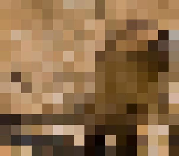 Sự thật đáng buồn về 22 bức tranh của các loài động vật có số lượng pixel tương ứng với số cá thể còn sống - Ảnh 6.