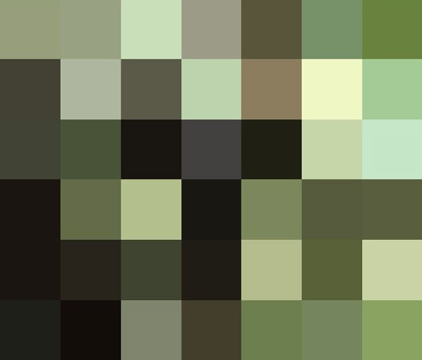 Sự thật đáng buồn về 22 bức tranh của các loài động vật có số lượng pixel tương ứng với số cá thể còn sống - Ảnh 22.