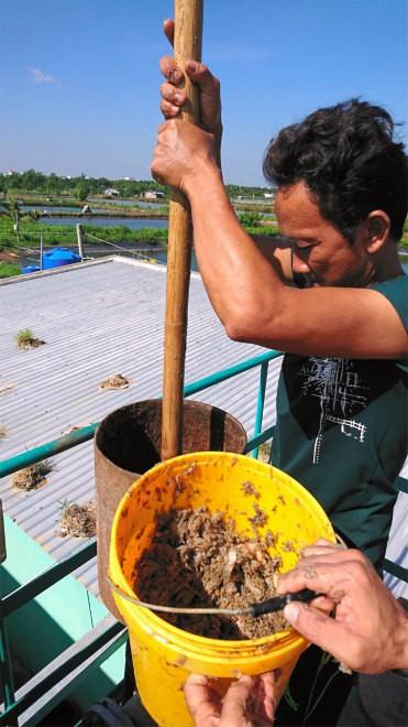 Sử dụng bùn ao, rơm và chất thải, đội ngũ các nhà khoa học Nhật Bản và Việt Nam tạo ra hệ thống sản xuất điện hiệu quả nhất thế giới - Ảnh 2.