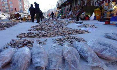 Thành phố lạnh lẽo nhất thế giới: âm 64 độ, ngoài chợ chỉ bán 1 loại thực phẩm duy nhất - Ảnh 5.