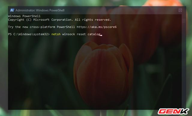 """Khắc phục lỗi hiển thị thông báo """"No Internet, Secured"""" gây khó chịu trên Windows 10 - Ảnh 5."""
