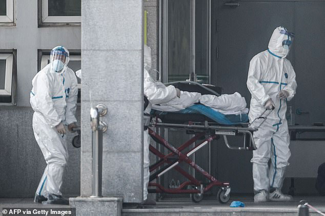 WHO: Virus corona mới chưa phải tình trạng khẩn cấp quốc tế, phong tỏa thành phố, cửa khẩu không ngăn được dịch bệnh lây lan - Ảnh 3.