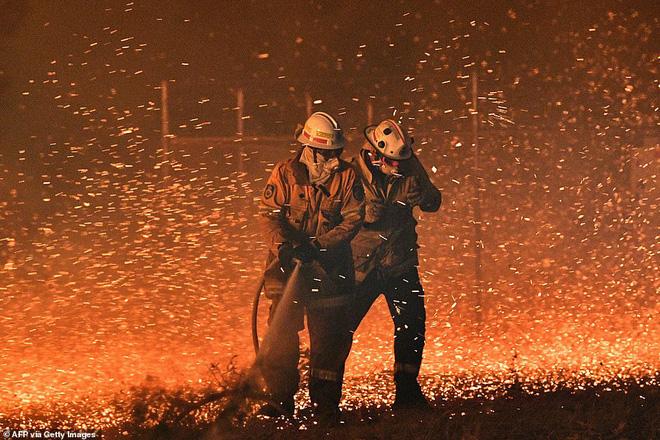 Đại thảm họa cháy rừng Úc nhìn từ không gian: Cả nước như quả cầu lửa, những mảng xanh trù phú bị thay bằng màu khói trắng tang thương - Ảnh 15.