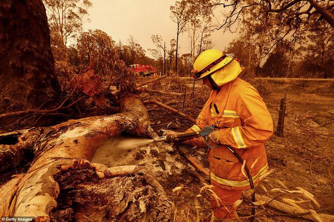Đại thảm họa cháy rừng Úc nhìn từ không gian: Cả nước như quả cầu lửa, những mảng xanh trù phú bị thay bằng màu khói trắng tang thương - Ảnh 16.
