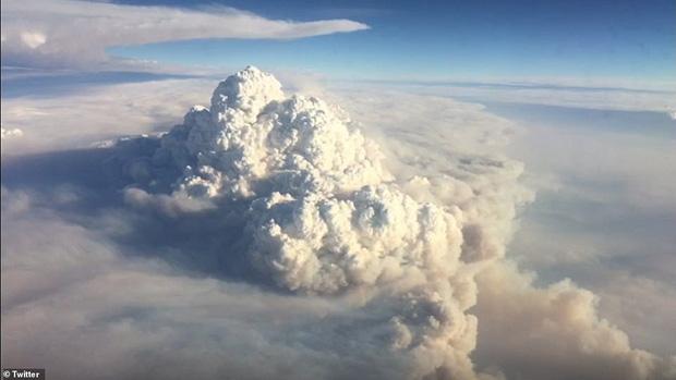 Đại thảm họa cháy rừng Úc nhìn từ không gian: Cả nước như quả cầu lửa, những mảng xanh trù phú bị thay bằng màu khói trắng tang thương - Ảnh 5.