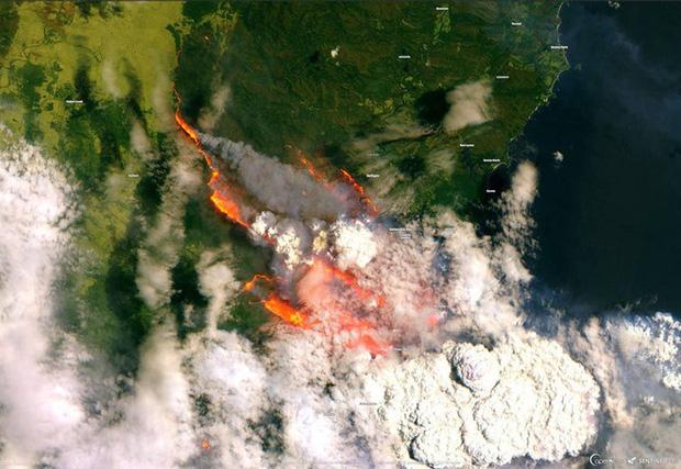 Đại thảm họa cháy rừng Úc nhìn từ không gian: Cả nước như quả cầu lửa, những mảng xanh trù phú bị thay bằng màu khói trắng tang thương - Ảnh 6.