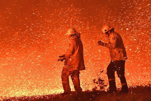 Đại thảm họa cháy rừng Úc nhìn từ không gian: Cả nước như quả cầu lửa, những mảng xanh trù phú bị thay bằng màu khói trắng tang thương - Ảnh 8.