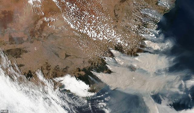 Cháy rừng ở Australia: Mưa lớn đã xuất hiện, trở thành vị cứu tinh cho lính cứu hoả! - Ảnh 2.