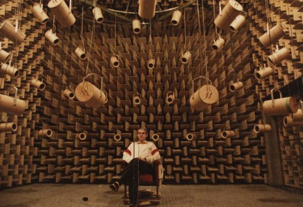 [Vietsub] Bên trong căn phòng yên tĩnh nhất thế giới, bạn có thể nghe thấy cả tiếng máu chảy trên đầu mình - Ảnh 6.