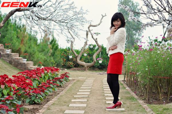 Một vài địa điểm chụp ảnh đẹp ở Hà Nội những ngày giáp Tết 9