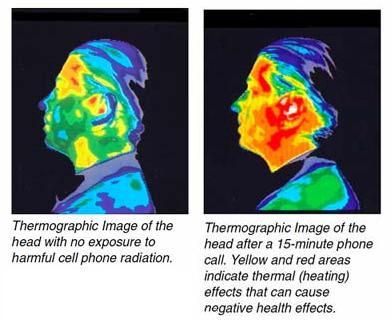 Biểu đồ nhiệt so sánh giữa việc không nghe điện thoại và nghe điện thoại trong 15 phút. Vùng màu vàng và màu đỏ miêu tả tác động của nhiệt mà có thể gây ảnh hưởng xấu tới sức khỏe.