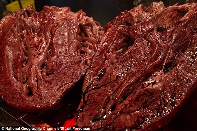 Các chuyên gia sẽ đối mặt với những thách thức trong việc cưa xương khổng lồ thông qua các động vật đã tuyệt chủng của, lội qua máu và thậm chí đối phó với mùi áp đảo của các bộ phận bên trong của nó (Model của trái tim T-Rex của ảnh)