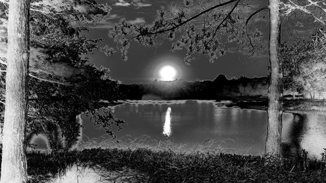 Mặt Trời lặn tại hồ Morton Arboretum, Illinois (Mỹ). Ảnh chụp bởi Raz Akhter bằng điện thoại Moto X.