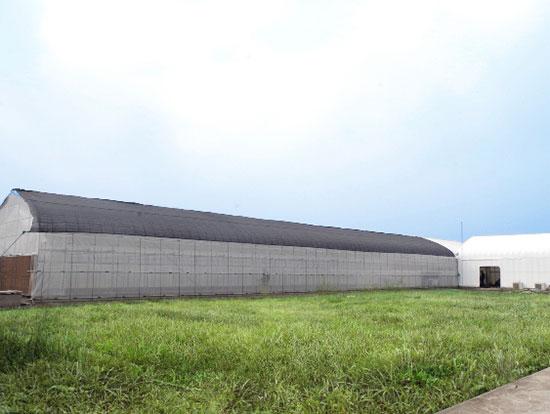 Trung tâm Hợp tác Nông nghiệp thông minh FPT-Fujitsu với diện tích 403m2, gồm 3 khu vực: nhà kính, nhà máy rau và khu trưng bày sản phẩm.