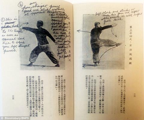 Nguyên gốc bí kíp được viết bằng tiếng Trung.