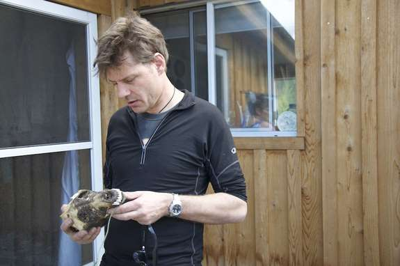 Alan Cooper đang cầm chiếc sọ của một con sói cổ ở Yukon, Canada.