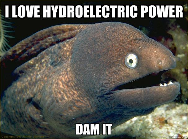 Cá hồi là một trong những loài sẽ không sống nổi nếu các đập thủy điện tiếp tục tồn tại.