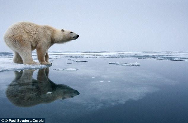"""Các thảm họa liên quan đến biến đổi khí hậu toàn cầu có thể khiến loài người phải đối mặt với """"ngày tận thế"""" - Ảnh: Corbis"""