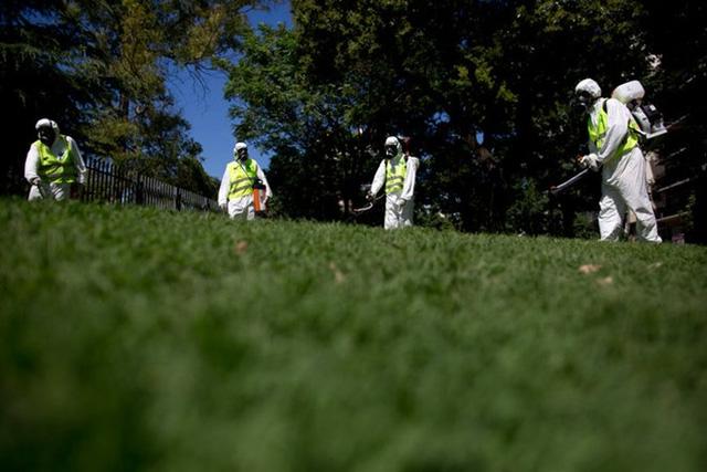 Các nhân viên dịch tễ đang phun thuốc ở công viên Chacabuco, Buenos Aires, Argentina. Ảnh: Natacha Pisarenko/Associated Press.