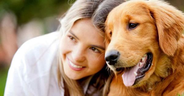 Các bạn thú cưng cũng là đối tượng được hướng đến trong ngày lễ tình nhân.