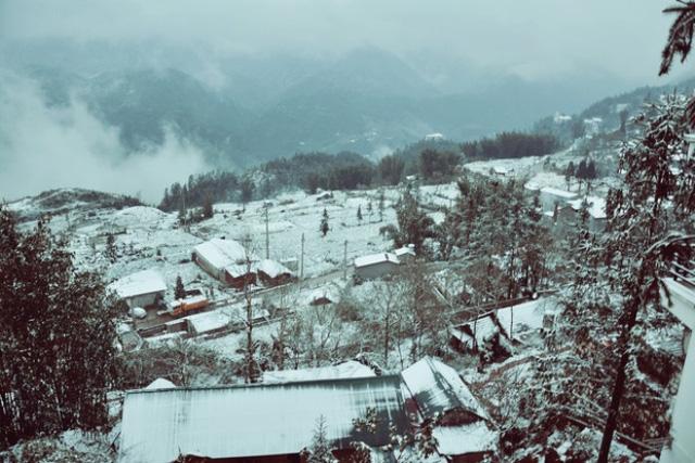 Tuyết rơi phủ kín ở Sapa. Ảnh: Gia đình xã hội.