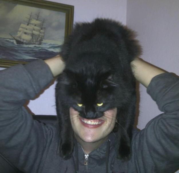 2. Catman - sự trở lại.