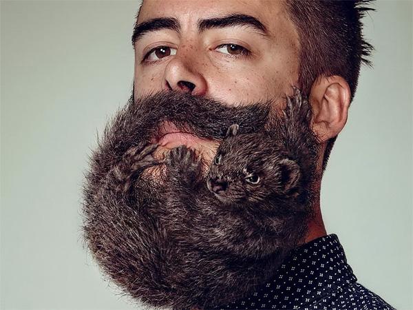 Cố gắng làm quả râu như thế này...