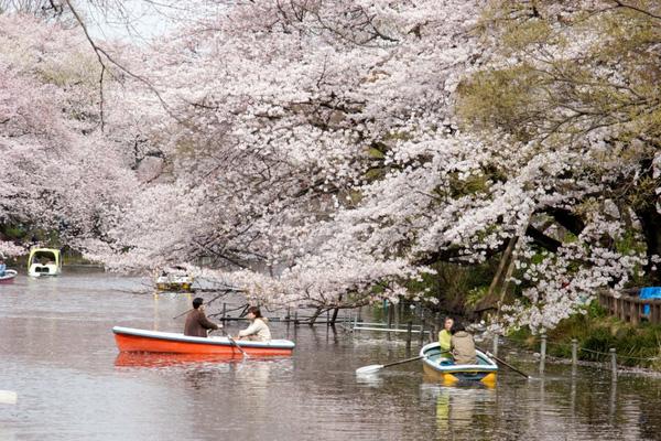 Phụ nữ Nhật Bản rất mạnh mẽ và đã dành riêng 1 ngày để tỏ tình với cánh đàn ông.