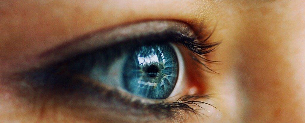 Cử động mắt này bị ẩn đi bởi sự chớp mắt thường xuyên, có tác dụng giúp ổn định hình ảnh tiếp nhận được bằng cách 'reset' mắt sau khi mắt di chuyển để nhìn một vật thể