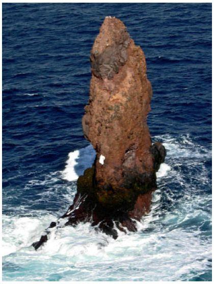 Quái vật kraken thực ra là tảng đá này